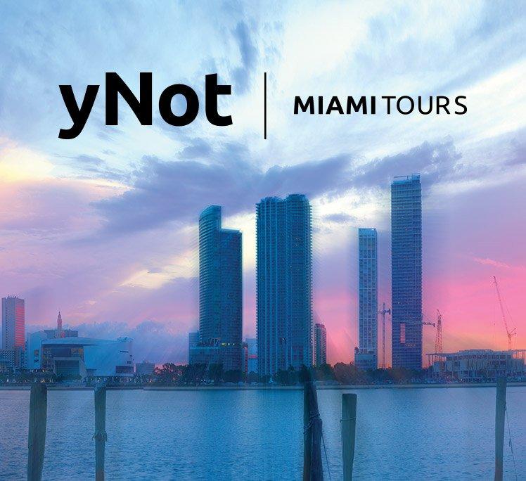Ynot-MiamiTours-logo-design